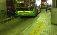 澳门10路線公交车路线