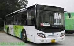 澳门73路線公交车路线