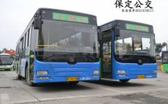 保定204路公交车路线