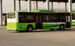 保定大王店202路公交车路线