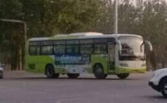 北京955路公交车路线