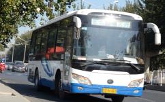 北京郊81路[密云-大兴]公交车路线
