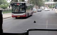 北京594路公交车路线