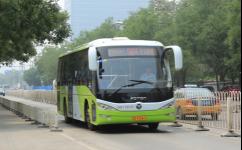 北京981路公交车路线