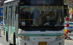 蚌埠206路公交车路线
