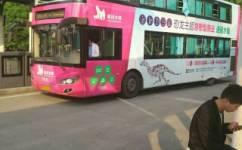常州Y2路(游2)公交车路线