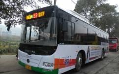 郴州53路公交车路线