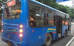 重庆223路[223区间]公交车路线