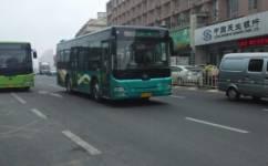 大连523路公交车路线
