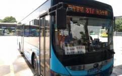 东莞817路公交车路线
