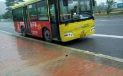 东莞厚街15路公交车路线