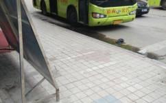 东莞樟木头12路公交车路线