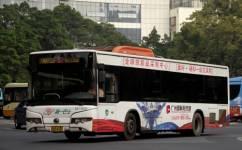 广州87路公交车路线