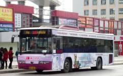 广州228路公交车路线