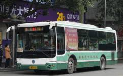 广州番7路公交车路线