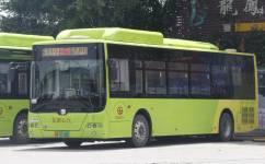 广州花19路公交车路线