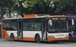 广州244路公交车路线