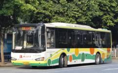 广州236路公交车路线
