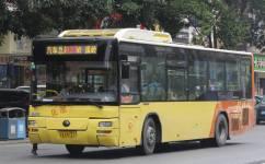 广州花23路公交车路线