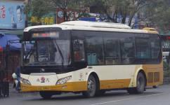 广州增城51路公交车路线