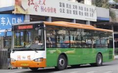 广州南65路公交车路线