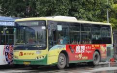 广州365路公交车路线