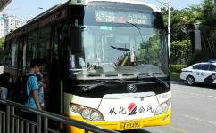 广州从化2路公交车路线