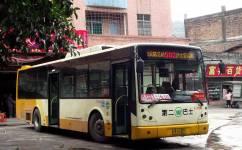 广州502沙田班车公交车路线
