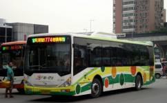 广州774路公交车路线