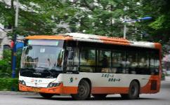 广州461班车公交车路线