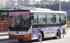 广州新塘6路公交车路线