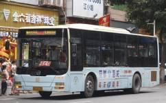 广州花62路公交车路线