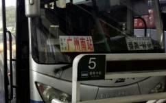 广州从化汽车站—广州南汽车客运站公交车路线