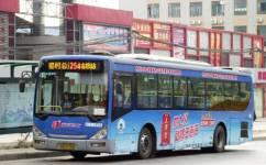 广州254路公交车路线