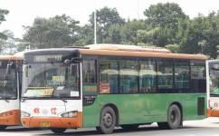 广州番110路公交车路线