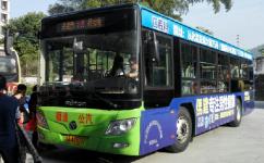 广州从化12路公交车路线