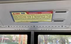 广州佛232高峰线公交车路线
