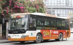 广州495路公交车路线