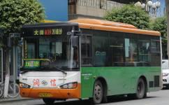 广州南39路公交车路线