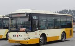 广州公交地铁接驳专线10A长线公交车路线