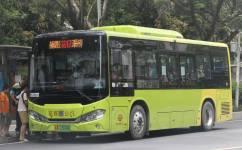 广州花17B路公交车路线