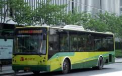广州239路公交车路线