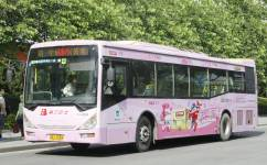 广州旅游公交3线公交车路线