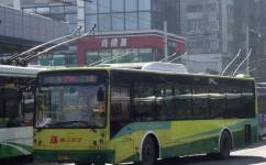 广州286路公交车路线