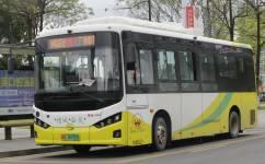 广州增城7路公交车路线