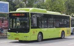 广州花30路公交车路线