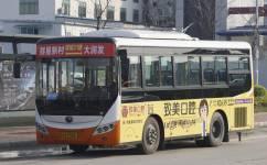 广州增城31路公交车路线