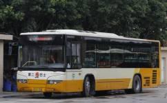 广州808路公交车路线