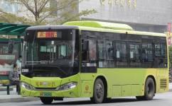 广州花37路公交车路线