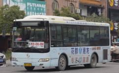 广州花83B路公交车路线